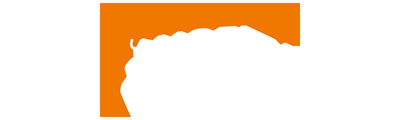 logo de l'entreprise SAS NOEL